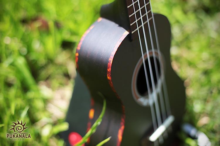 puka-rosette-black-4.jpg