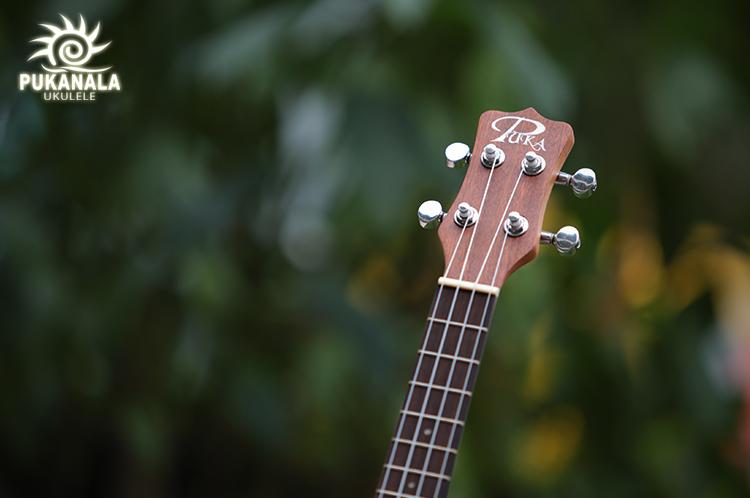 puka-ukulele-pu-nvc-2.jpg