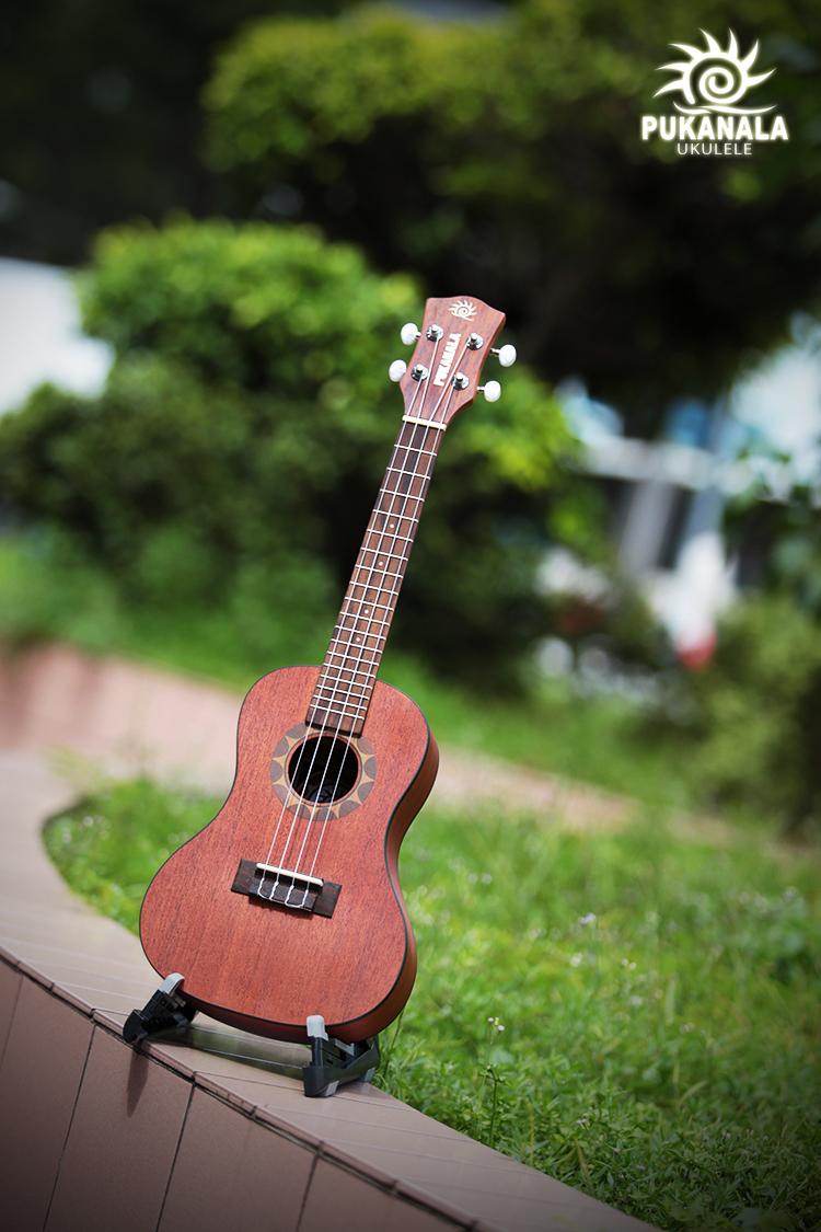 puka-ukulele-pu-nvc-4.jpg