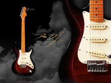 Dean Zelinsky Private Label - Tagliare Custom M Walnut Burst