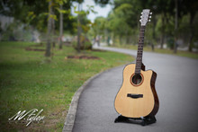 M.Tyler Guitars MTD-500 C Acoustic Guitar