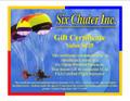Six Chuter Discovery Flight Certificate