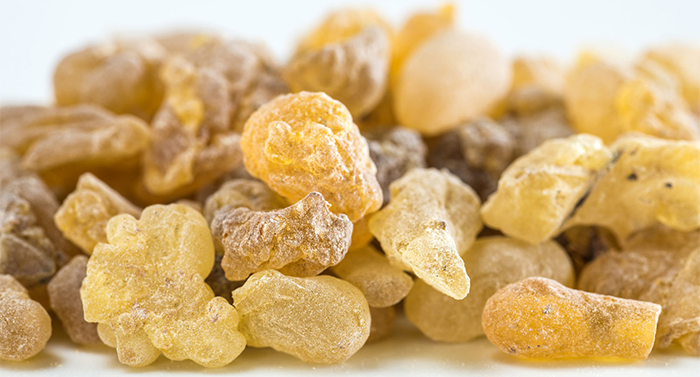 Best Frankincense Skin Care Products In California at Rosemira Organics