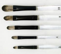 Fusion Filbert 5  Brush Set