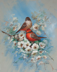 DVD1108 Vermillion Flycatchers