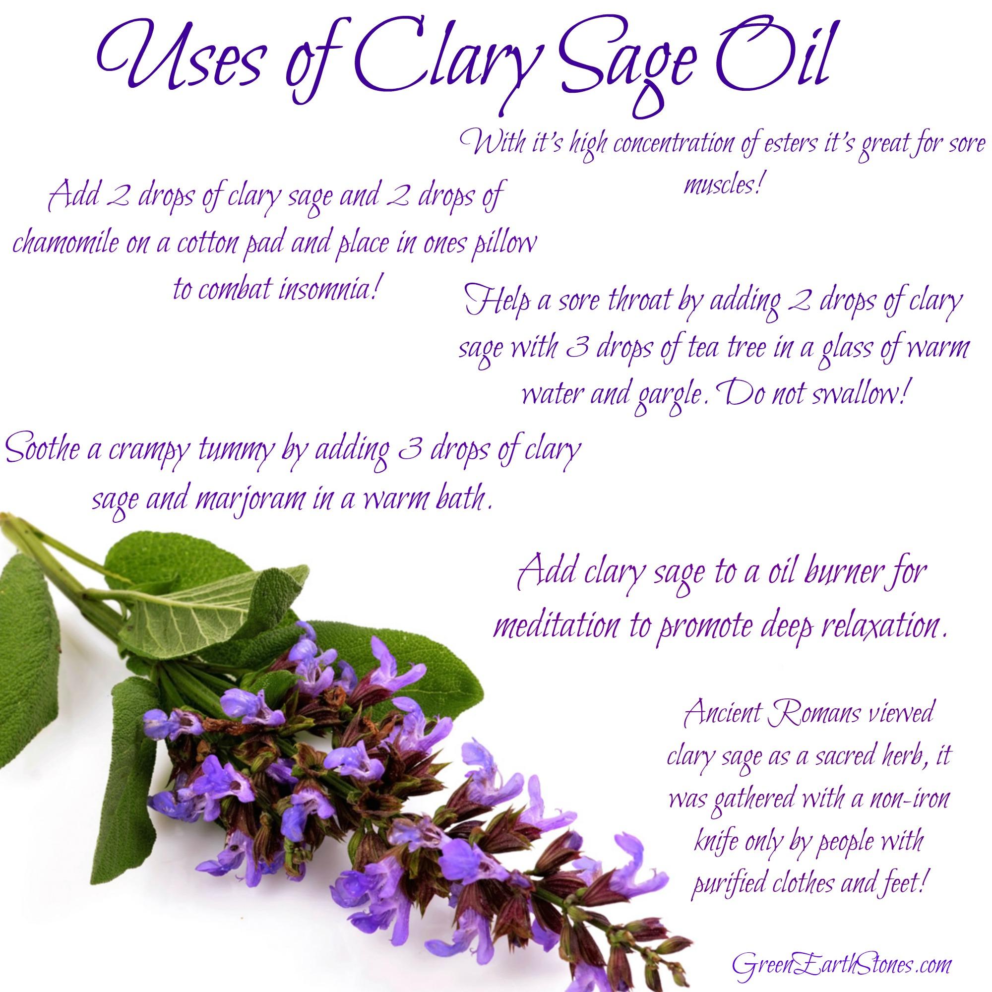 clary-sage-info-sheet.jpg