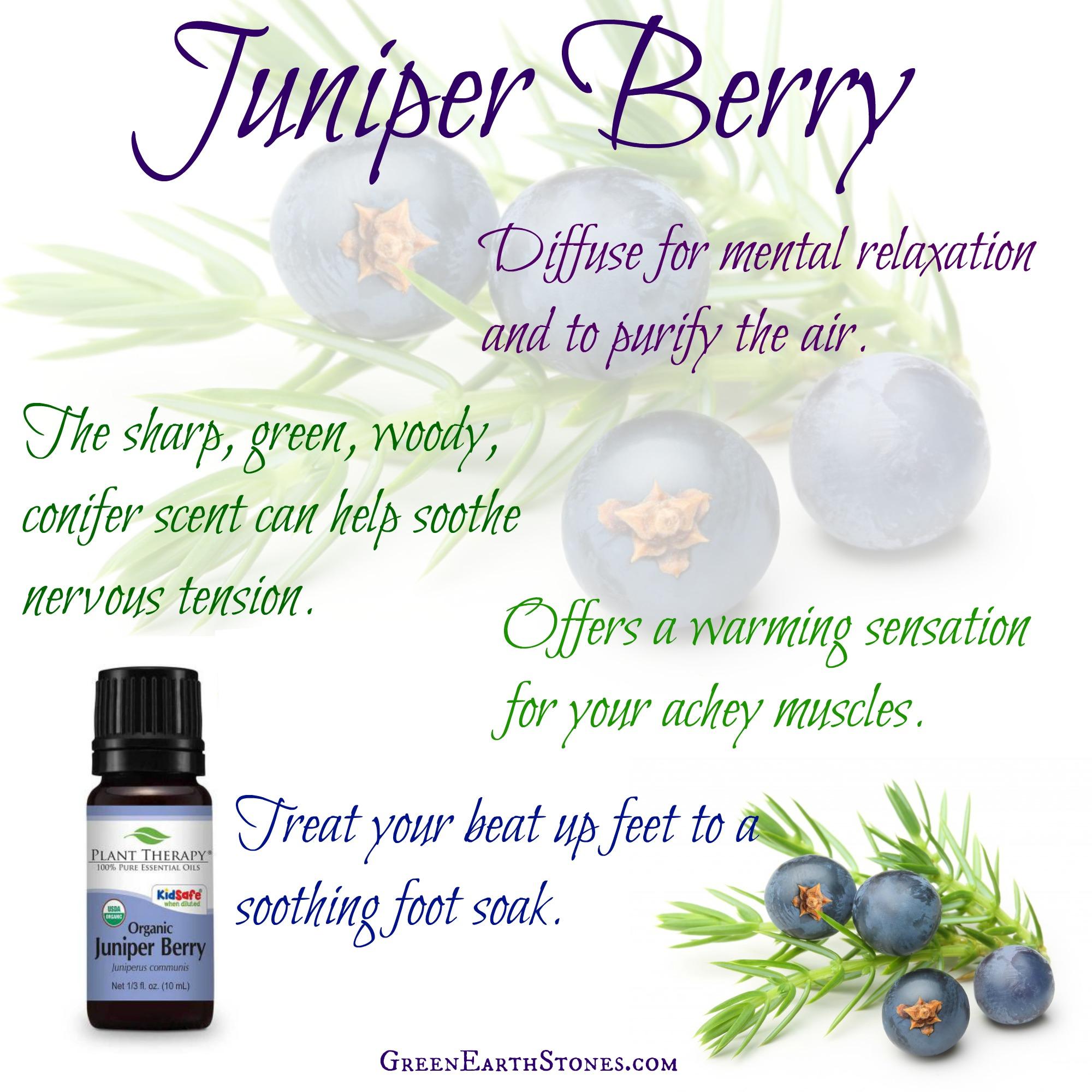 juniper-berry-flyer.jpg