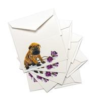 Enclosure Cards | Sharpei | Roscoe