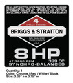 Briggs & Stratton 8HP 399 CC Decal