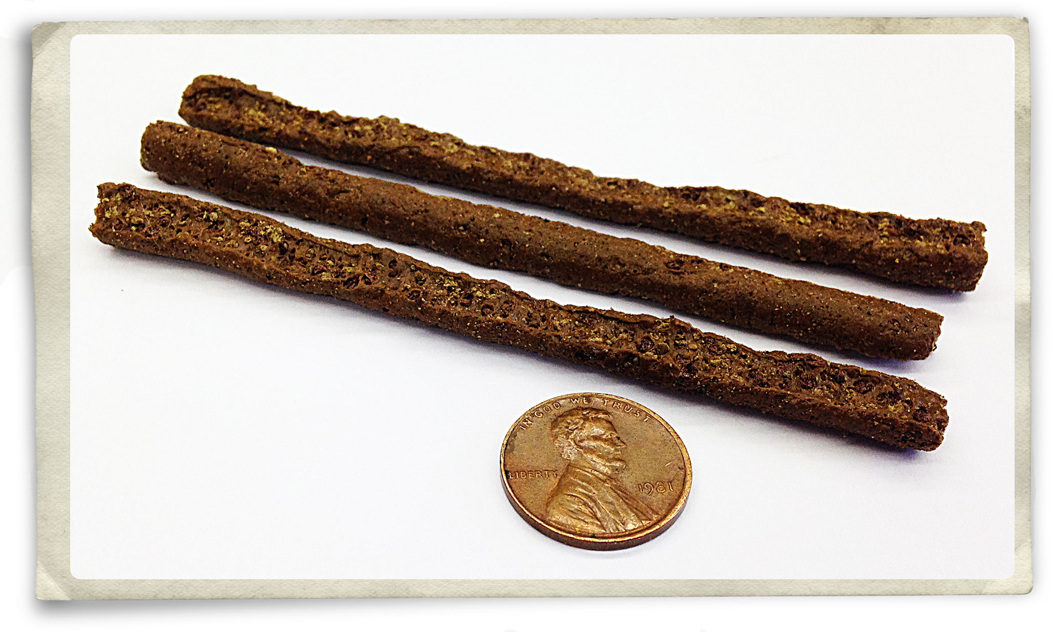 new-brn-4-inch-worms.jpg