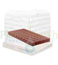 """Oasis Rootcubes (1.5"""" cubes with 50 cells on a sheet) in Bulk (713700) UPC 45744050157"""