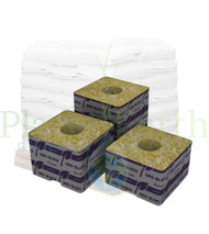 """Grodan Delta 8 Block (4"""" x 4"""" x 3"""") with hole by the Pallet (RWDM8G-15) UPC 856372001455"""