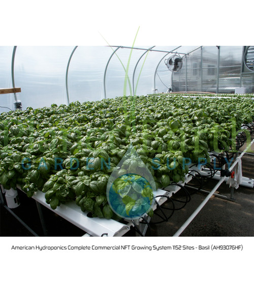 American Hydroponics Complete Commercial NFT Growing System 1152 Sites - Basil (AH93076HF)