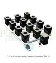 Current Culture Under Current Evolution 12XL 13 (743066) UPC 697691621357