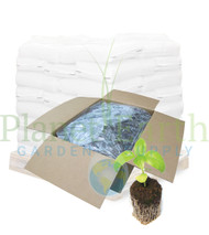 General Hydroponics Rapid Rooter Plugs (case of 1400) in Bulk (714150) UPC 793094981576