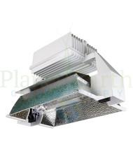 Agrolux ALF1000 240-277V Optimal DE (HT101206) UPC 4646003859588 (1)