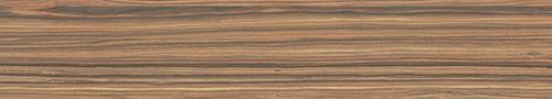 amazonas-teja-bullnose-4x22.5.jpg