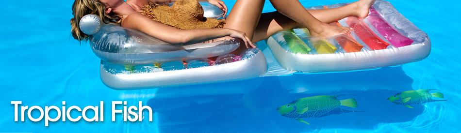 tropicalfish-73143ccf278a20c3b6b7a432d8657333.jpg