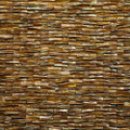 Fin Relief Shell Mosaic Natural