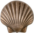Scalloped Seashell Accent Tile 3.50 inches