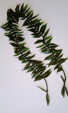 Maile Style Ti Leaf Lei