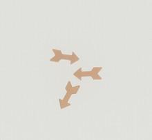 Copper Mini Arrow