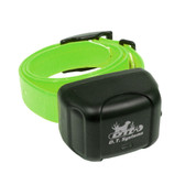 D.T. Systems Rapid Access Pro Dog Trainer Add-on collar Green