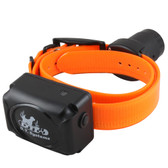 D.T. Systems R.A.P.T. 1450 Additional Dog Collar Orange